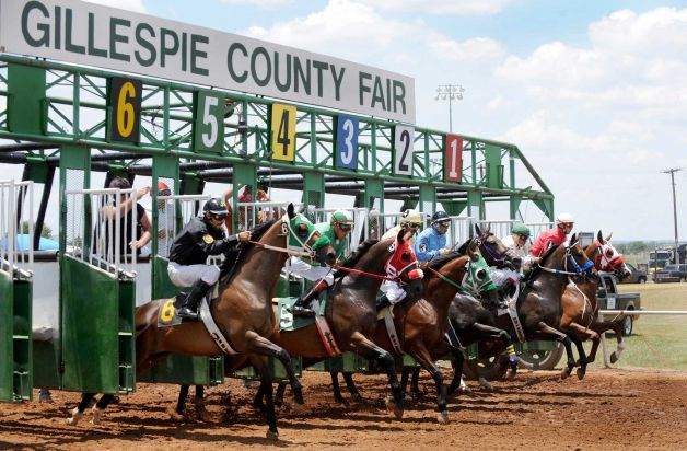 live horse racing feed