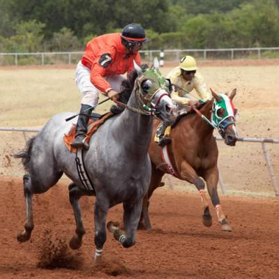 gillespie county horse racing