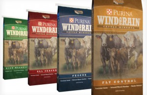 Purina Cattle Feeds, Minerals