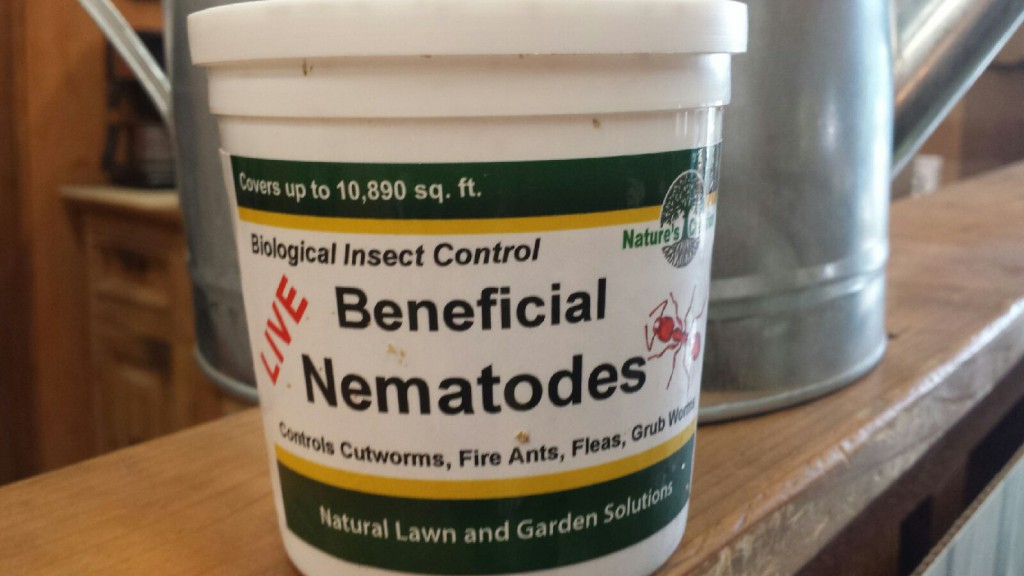 Beneficial Nematodes