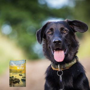 Taste of the Wild Pet Food | Lochte Feed