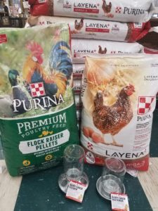 Bag of Purina Flockraiser and Layena Poultry Feeds