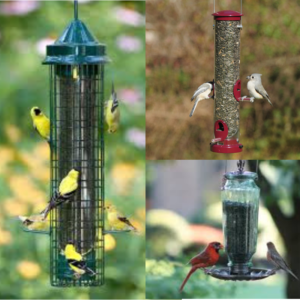 Preparing for Spring Bird Feeding
