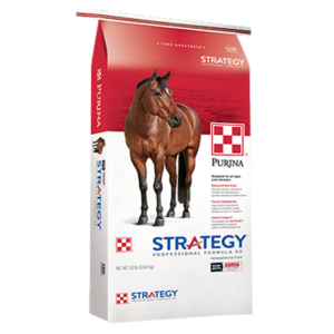 Purina Strategy Professional Formula GX Horse Feed. Red and white equine feed bag. Brown horse.