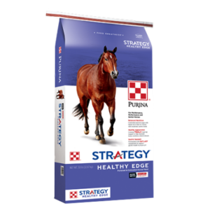 Purina Strategy Healthy Edge Horse Feed. Blue and white equine feed bag. Brown horse.