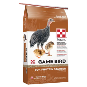 Tan and white feed bag. Young game birds.